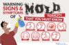 Mold Inspection Services Boise